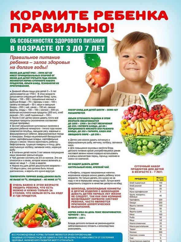 Организация питания в ДОУ - Сайт st-dou32!