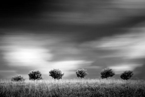 Hill (Copyright Martin Schmidt)