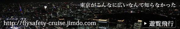日本フライトセーフティ遊覧飛行サイトへ