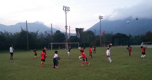ジュニアサッカー教室
