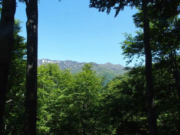 別山から山三ノ峰の展望。白山山頂から南龍ケ馬場~別山~三ノ峰の縦走も懐かしい思い出。