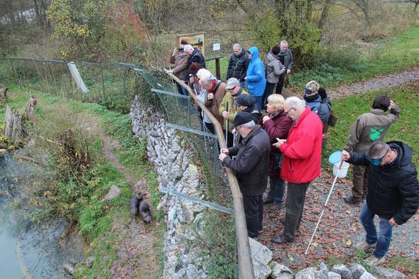 Gelebte Inklusion: Sehbehinderte und sehende Menschen freuen sich über den Besuch am Gehege der Fischotter im Tiergarten in Weilburg. (Foto: Landkreis Limburg-Weilburg)