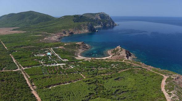 Foto del sito www.torredelporticciolo.it
