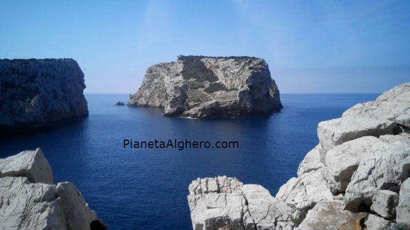 Nella foto L'Isola Piana, Cala della Barca.