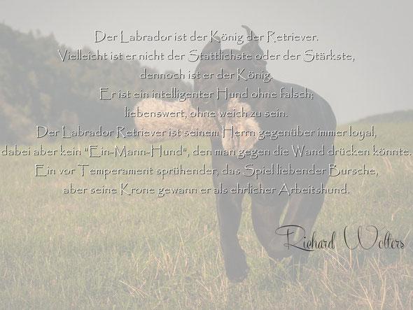 © Nadine Rudorf