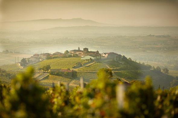 仏国ブルゴーニュ地方のワイナリー(写真出典先:ワイン&スピリッツ専門誌「ウォンズ」のサイト)