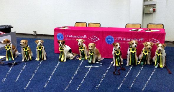 Teilnehmende Kromis an der Bundessiegerausstellung 2013