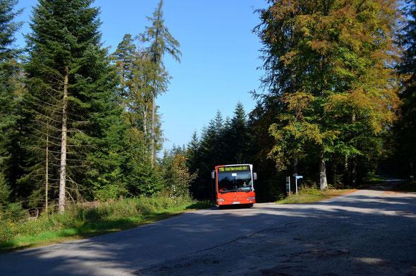 RA-UL 320 war am 03.10.2014 als Kurs 116 702 unterwegs in Richtung Bad Herrenalb.