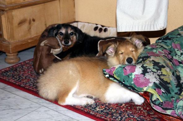 Bailey mit ihrer neuen Lebensgefährtin Cleo