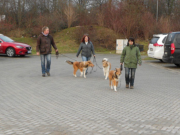 v.li. Bjarki, Tim, Boots jeweils mit Frauchen (Foto: M. Vandicken)