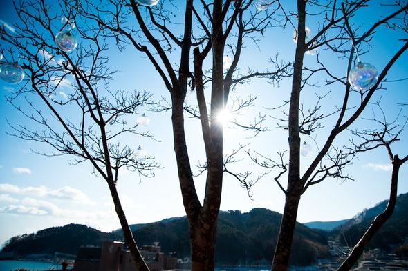 photo by Toshie Kusamoto