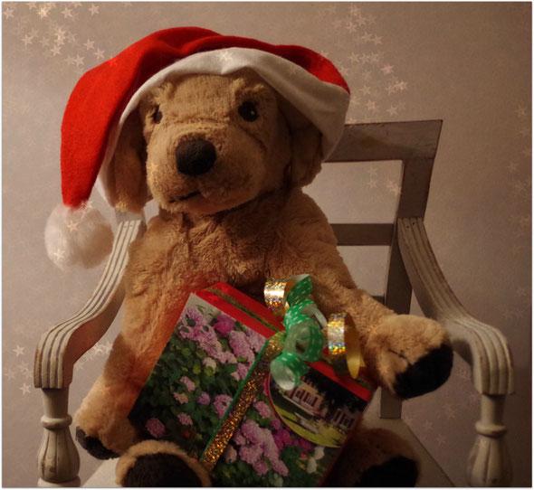 Doudou et son cadeau