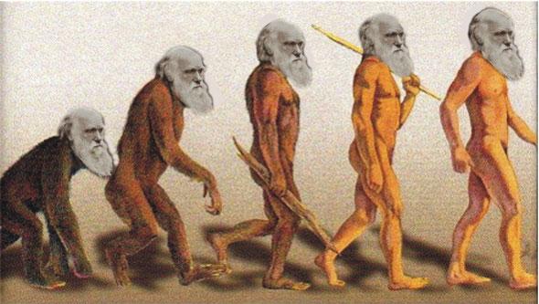 El origen, (Homenaje a Darwin), por Antonio Mellado (Curso 2013/2014)
