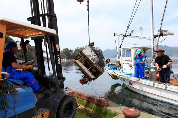 雄勝港の清掃作業。漁師さん達自ら作業をしています