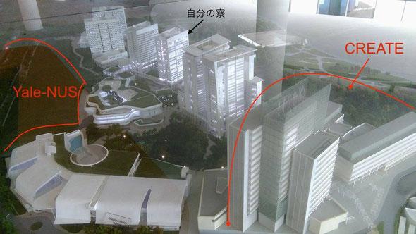 University-town全体の模型
