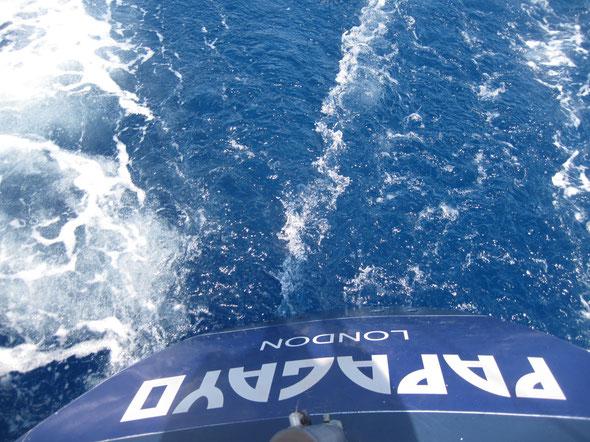 Papagayo Sailing yacht