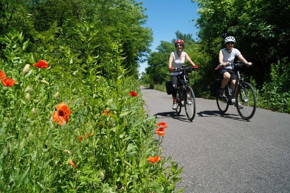 Percorso Bike Treviso-Ostiglia