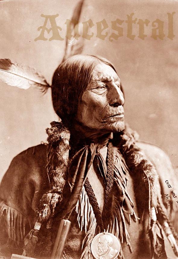 Wolf Robe - Cheyenne Cheif