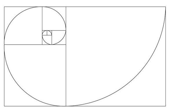 Fibonacci-Spirale