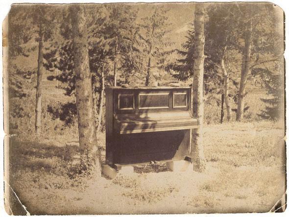 Klavier im Wald