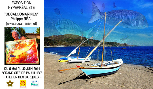 Exposition ouverte (Entrée libre) aux jours et horaires d'ouverture de l'Atelier des Barques