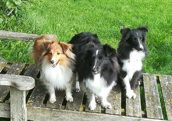 Anneli, Mama  Winnie und Brady