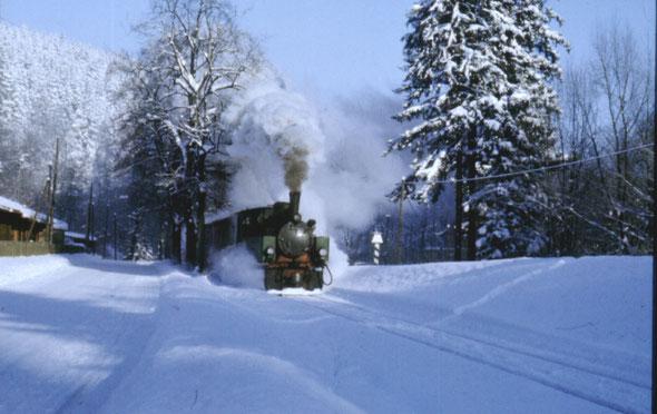 Alexisbad im Harz; Ausfahrt des Zuges in Richtung Straßberg / Stiege; Zuglok 99 5901 (NWE 11); Temperatur - 9°C