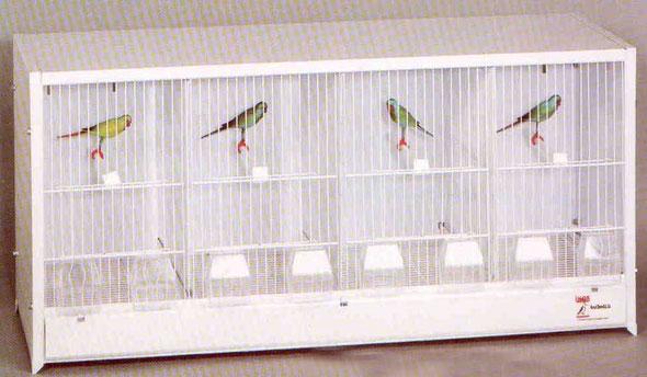 módulo cría nº2 90x40x30 desmontable 070.005- 88€ conjunto 4 plantas + pié-325€ portes incluidos en península