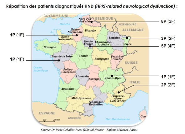 Repartition des malades Lesch-Nyhan en France (HND)