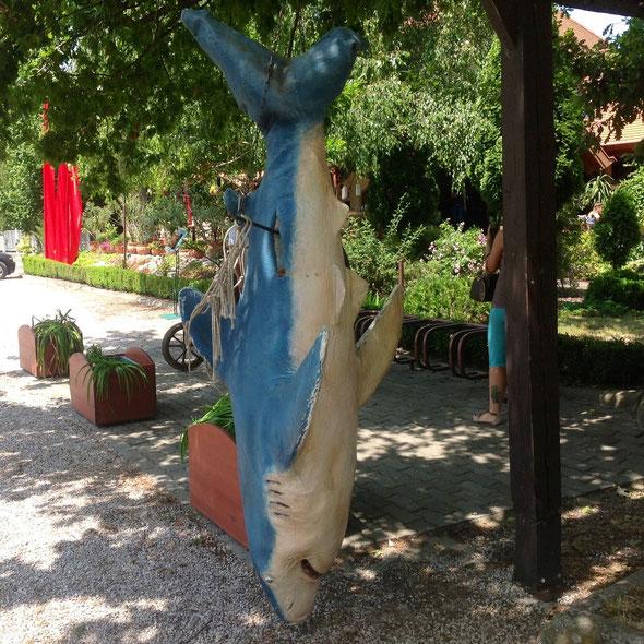 Огромная акула, предмет удивления детишек и внимания взрослых.