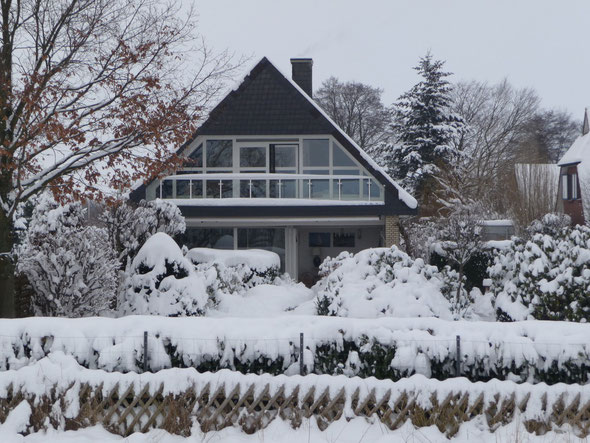 Winterstimmung  2010 / 2011