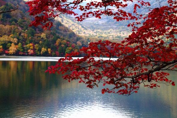 NO.24 湯の湖の紅葉
