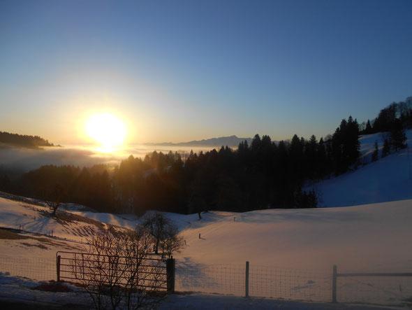 Blick vom Haus aus auf den Säntis 17.03.2016