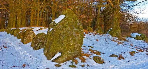 Das gut erhaltene und archäologisch untersuchte Megalithgrab (Hünengrab) im Schloßpark Dwasieden nahe des Steilufers