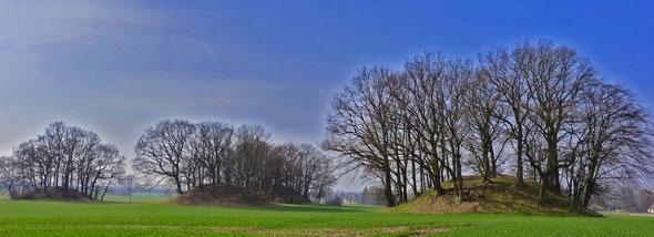 Die Hügelgräber bei Woorke nahe Ralswiek