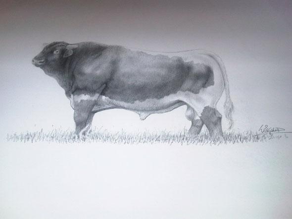 Zeichnung von Jörg Wiegand.