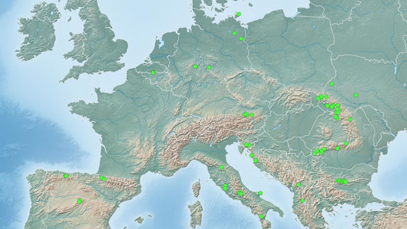 Abb. 2: Die Lage der UNESCO-Welterbe-Buchenwälder.