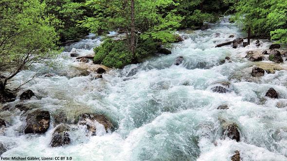 Abb. 2: Die Savica in Slowenien beim Zusammenfluss der Quellflüsse Mala Savica (links) und Velika Savica (rechts).