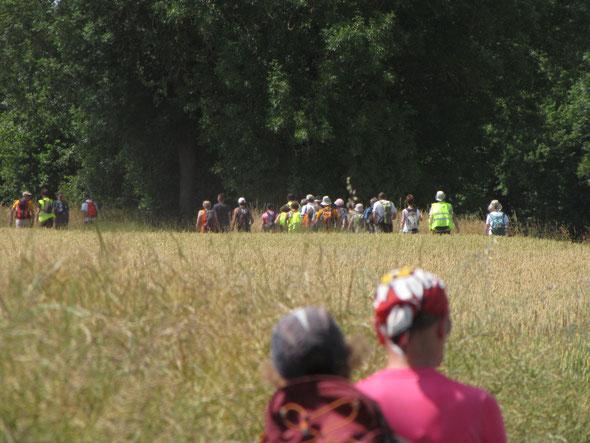 L'apres  midi   était  trés  chaud  . Nous étions  moins  nombreux   - uniquement des  Marathoniens  et  5 semi-marathons  .