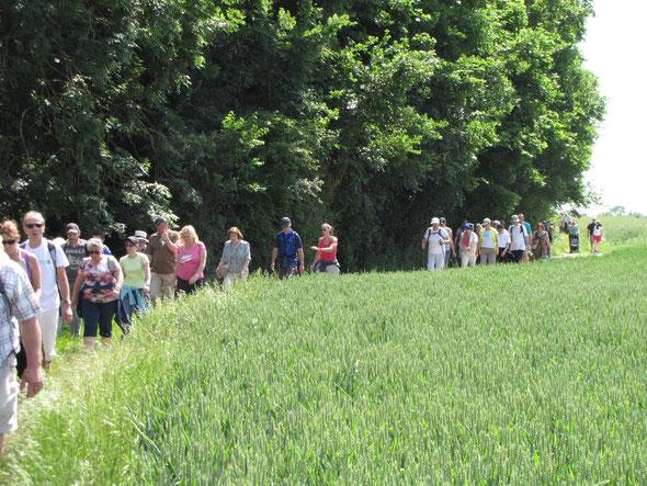 Plus de  70 randonneurs  ont  participé à l'édition de  l' OISE VERTE et BLEUE de  nogent  le  07 juin  2015 .