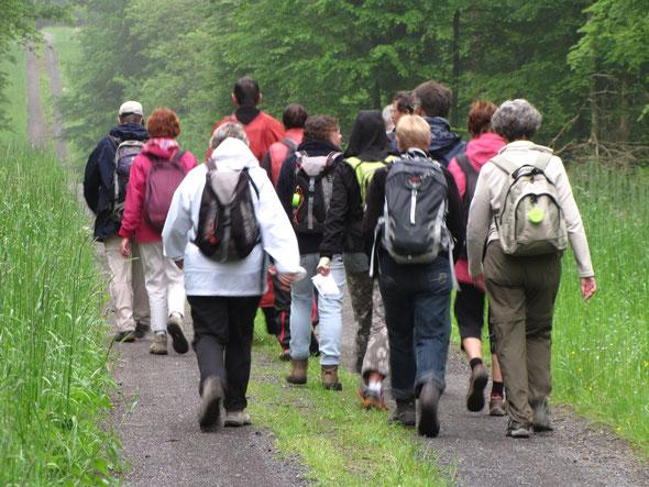 En groupe dans  la Forêt de FOURMIES  .