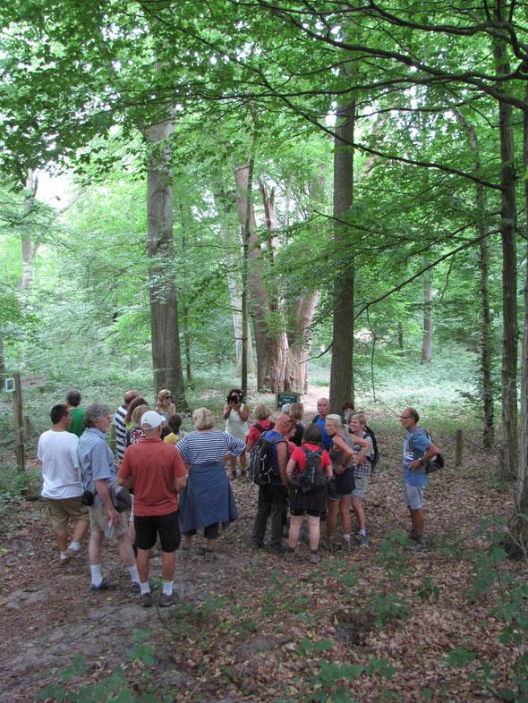 Barbecue : devant  l'arbre  remarquable   : les  3 FRERES  - groupe des  12 km .  Voir la  suite  sur  PHOTOSS.