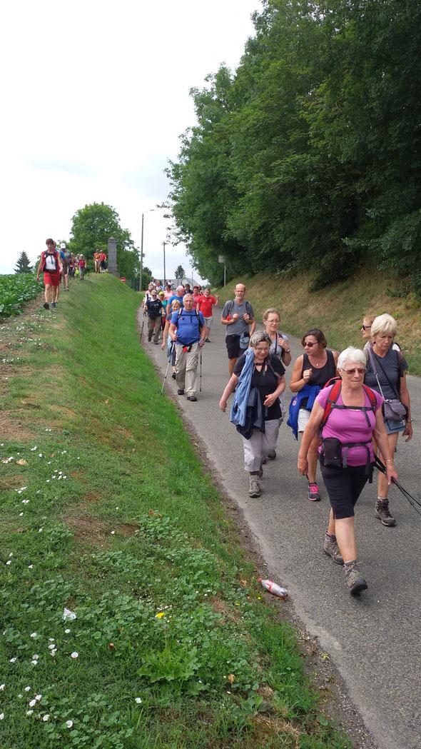 VALLEE DE  L OISE   :  19/07/2015    en route vers  Guise  au départ de  Moy de  l'Aisnes