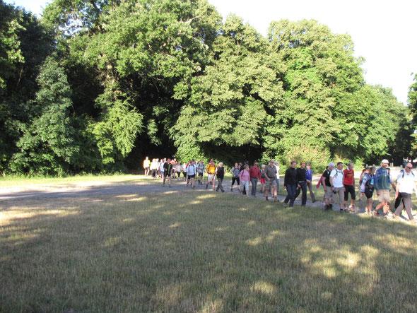 le départ  à 7H45  2 groupes  -plus de 58 randonneurs : semi et  marathon groupés  .