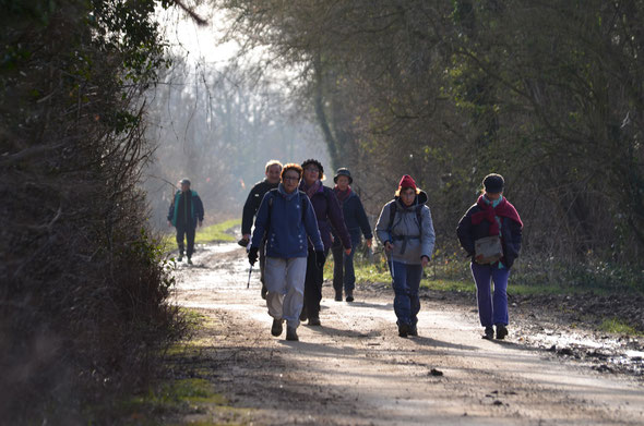 La rando Solidaire avec le Secours Populaire  . Plus de  170 randonneurs  sur les chemins de Nogent et des environs .
