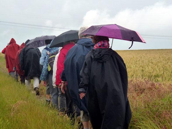 Sous la  pluie - circuit de st Leu  - 29 06 2014  -  On voit les vrais randonneurs  !