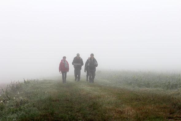 Au matin , il y avait un peu de  brouillard  mais pas de  pluie sur cette  journée ensoleillé .  Nous sommes  au Sud des  Hauts de  France  .