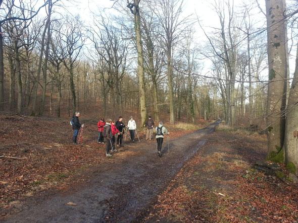 Cours d'approfondissement de la  technique  dans  la Forêt de  Hetz  le  08 02 2014  avec  l'expert  MN .