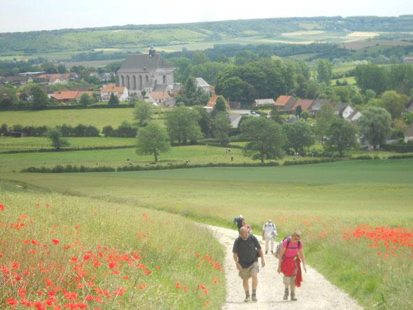 Petite  photo  pour les  gens qui croient que  la marche s'est facile  .  Côte dans  les coquelicots .WK  les 2 caps et Marais d'Opale.