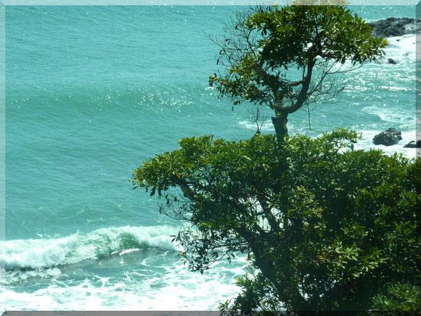 安芸市矢流から見た海